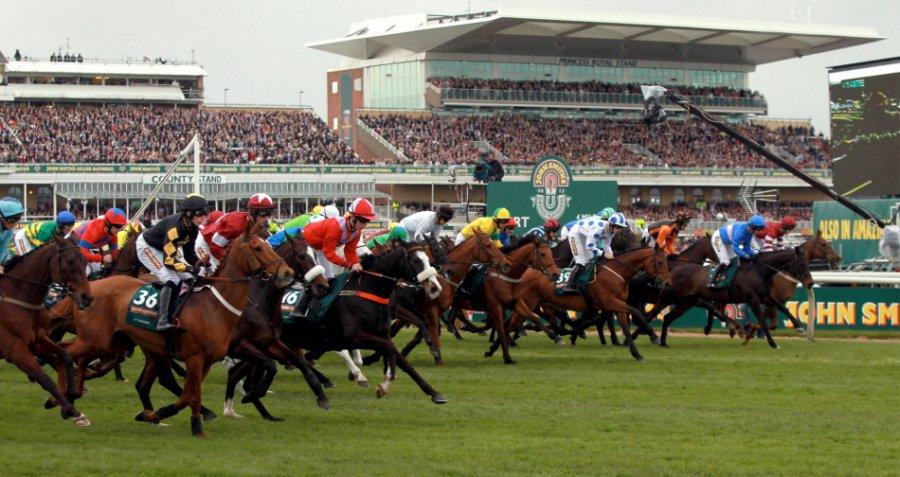 Как да печелим от залозите на конни надбягвания